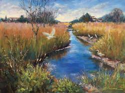 Egret Sanctuary