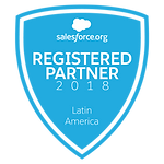 salesforc registered partner, partner registrado de salesforce, consultora crm