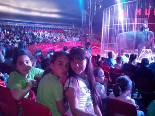 Una tarde de circo