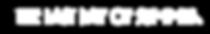 LDOS Logo WHITE.png