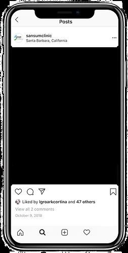 SANSUM PHONE.png