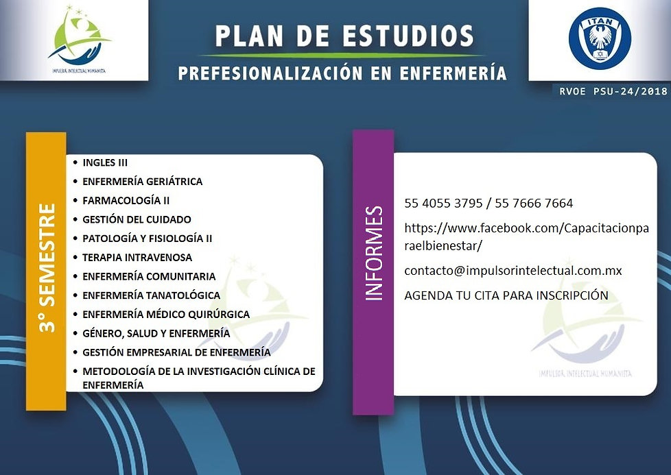 PLAN DE ESTUDIOS LEP 2.jfif