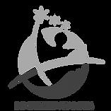 logo IIH-01_edited_edited.png