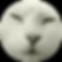 Powder Logo (Round) 2.png