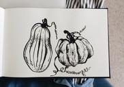 2015-10-12 Pumpkins.jpg
