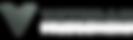 VP Logo Banner Website.png