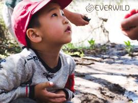 EverWild LA: Nature Immersion Program in the Santa Monica Mountains - Topanga Park, CA