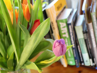 Happy Spring! Enjoy these FREE Curriculum Links & Resources!