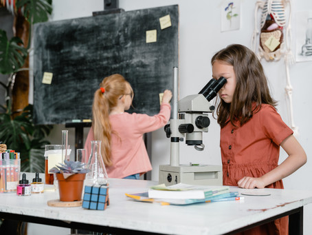 Researching Which Independent Study Charter School to choose? Read This List with Links & Tips!