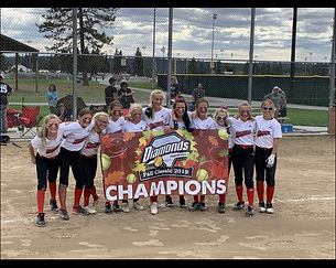 12u CHAMP STEALTH.jpeg