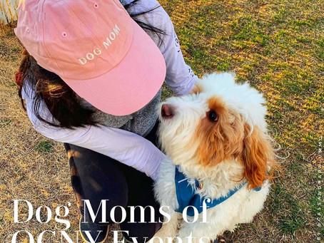 Dog Moms of OCNY Events Calendar: Dog Friendly or Bust
