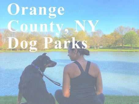 The Best of & Around Orange County, NY Dog Parks
