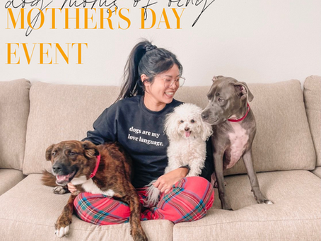 Dog Mother's Day Event: Dog Moms of OCNY