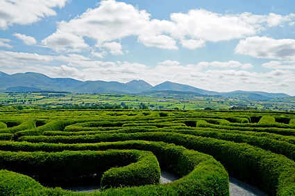 The Peace Maze in Castlewellan, Northern