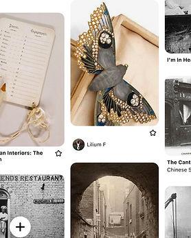 screenshot_moth.jpg