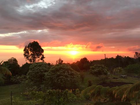 Sunset at Hōʻoli Farm