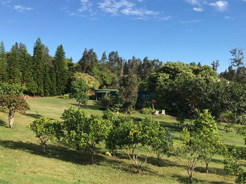 View Hōʻoli Farm toward LauLāʻau Day Retreat and Academy