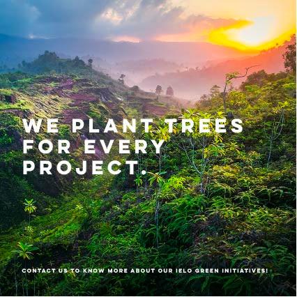 trees website.jpg