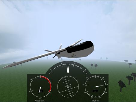 Virtual Flight Test Environment for Pilot Training