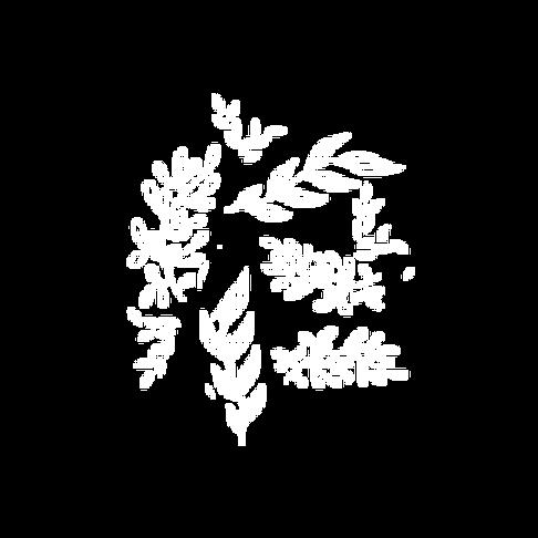 aurelie-renard.png