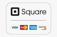 5-55727_pin-visa-master-visa-card-logo-p