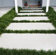 Mondo Grass.jpg