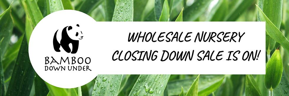 websiteheader -Wholesalenursery.png