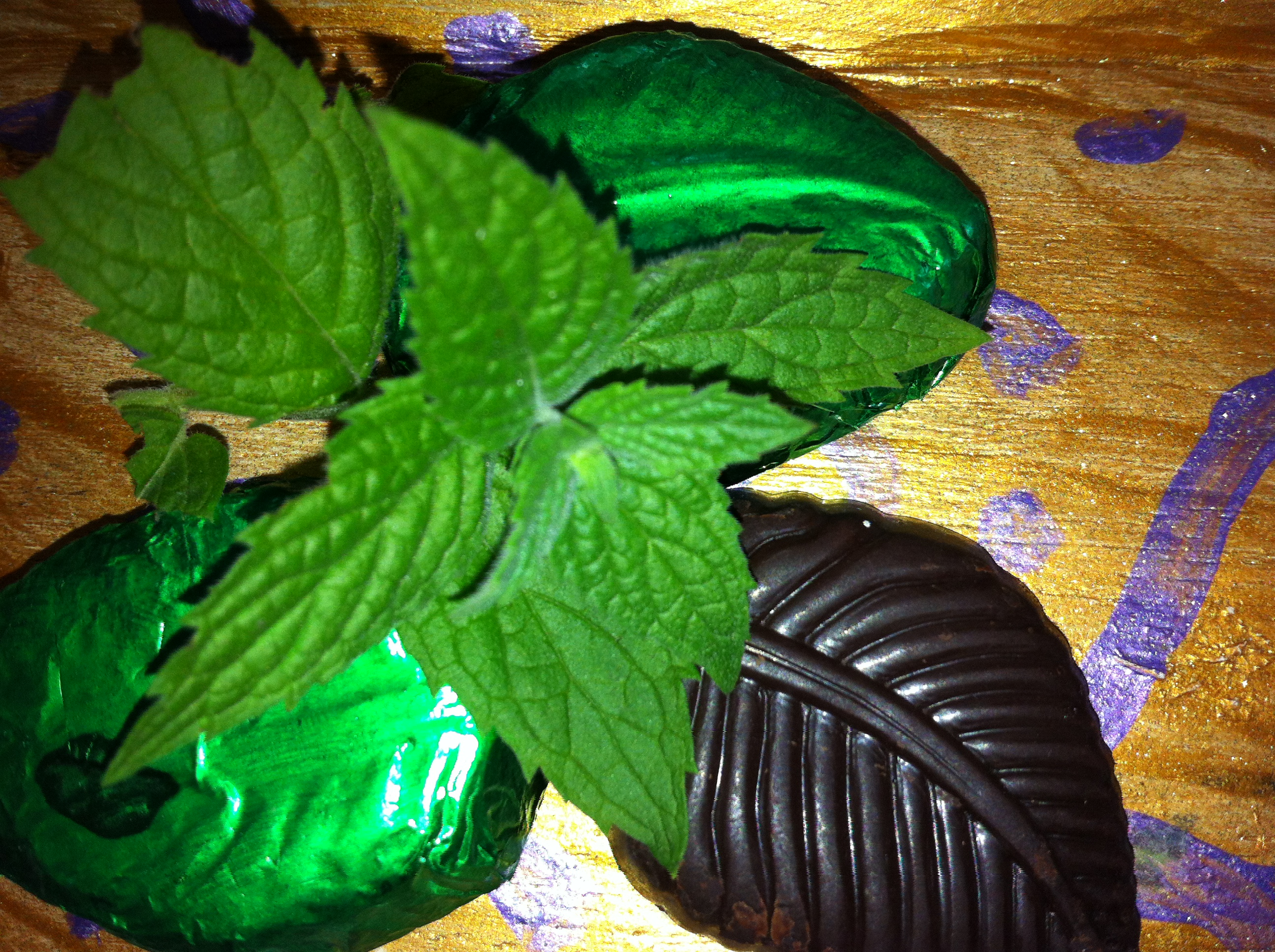 Mint BonBons 70% Dark Chocolate