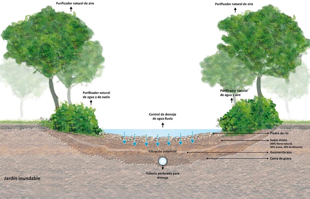 Incorporación de los sistemas naturales para lograr el correcto manejo de las ecologías sensibles ante la presión del crecimiento urbano.