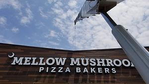 Mellow Mushroom Lift.jpg