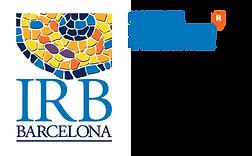 logo iirb.png