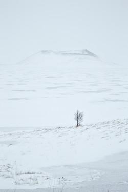 Iceland_078.jpg