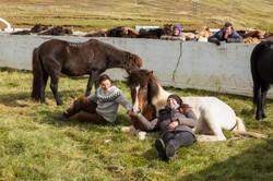 Ice_Horse_023