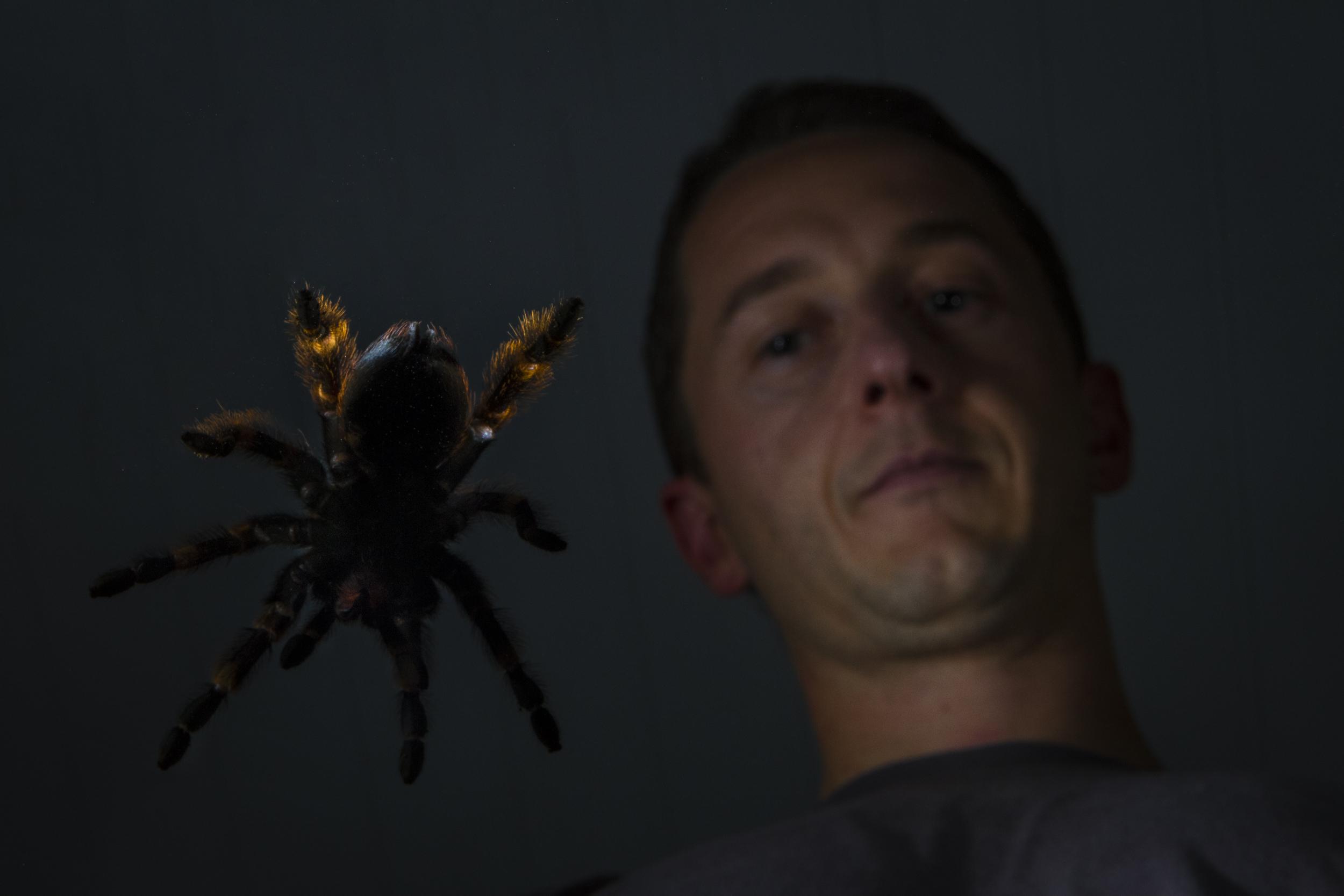 Venom_005