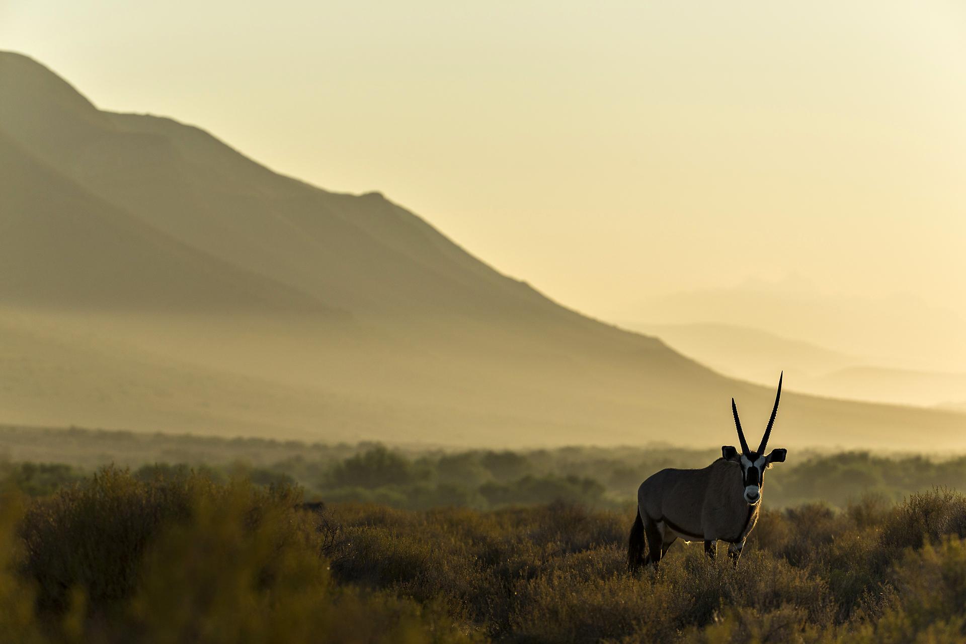 SouthAfrica_002.jpg