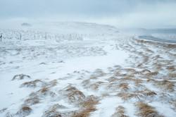 Iceland_080.jpg