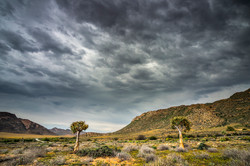SouthAfrica_040.jpg