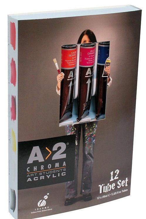 A2 Acrylic Paint Set 12 x 20ml tubes