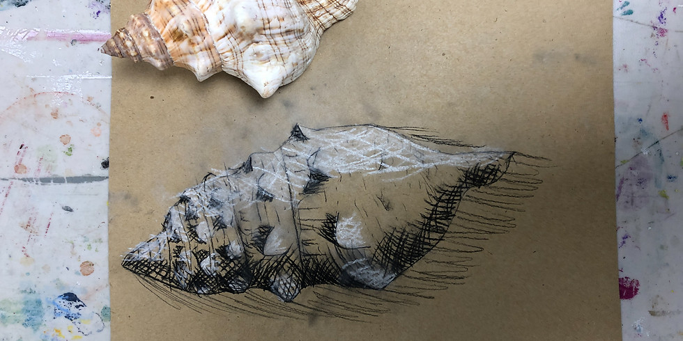 Drawing Skills Workshop - Wednesday 13th January 1pm - 4pm