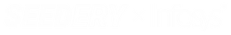 SeederyxInfosys_Logo_v4.png