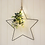 Thumbnail: Hanging Eucalypyus  Star with Led Lights, Large