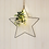 Thumbnail: Hanging Eucalypyus  Star with Led Lights, Small