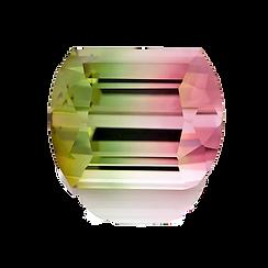 bicolor tourmaline mayer and watt