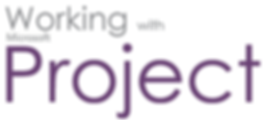 Working with MS Project Ottawa