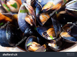 stock-photo-steamed-mussels-in-white-win