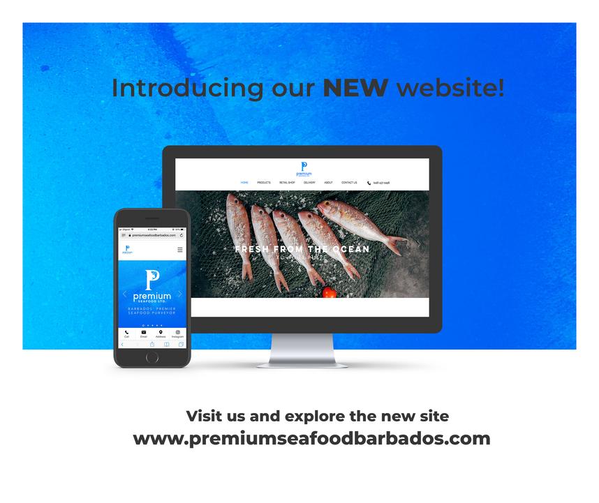Website Launch Visuals