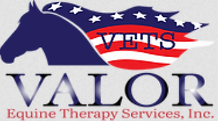 Valor Equine Therapy Service