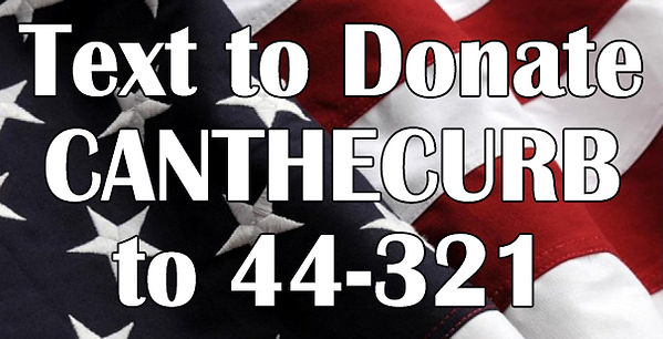 $waving flag text to donate.jpg