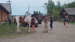 games with horses