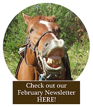 Talking Horse February.png